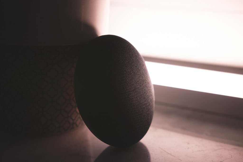 voice-search-google-home-mini